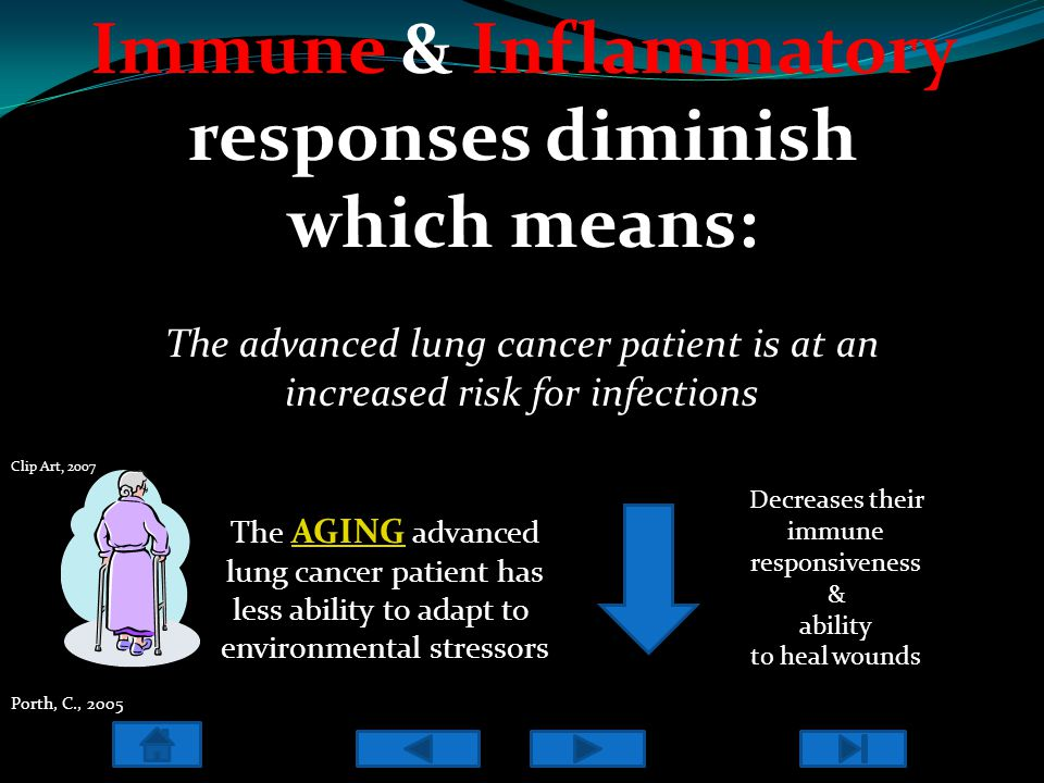 Immune & Inflammatory responses diminish which means: The advanced lung cancer patient is at an increased risk for infections The AGING advanced AGING lung cancer patient has less ability to adapt to environmental stressors Decreases their immune responsiveness & ability to heal wounds Porth, C., 2005 Clip Art, 2007