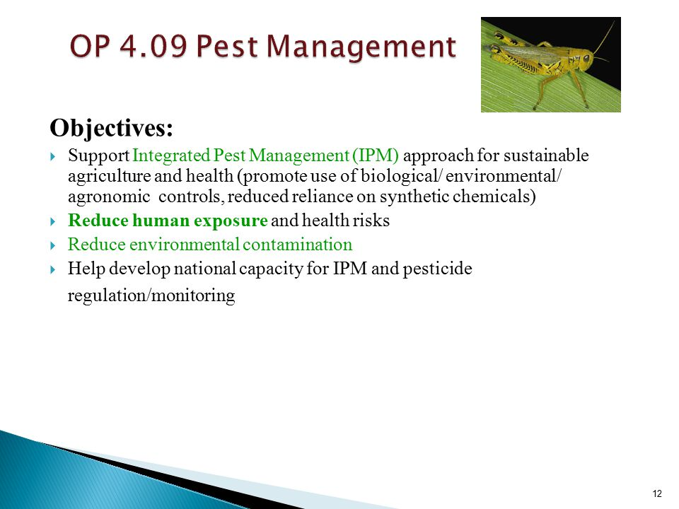 Objectives:  Support Integrated Pest Management (IPM) approach for sustainable agriculture and health (promote use of biological/ environmental/ agronomic controls, reduced reliance on synthetic chemicals)  Reduce human exposure and health risks  Reduce environmental contamination  Help develop national capacity for IPM and pesticide regulation/monitoring 12