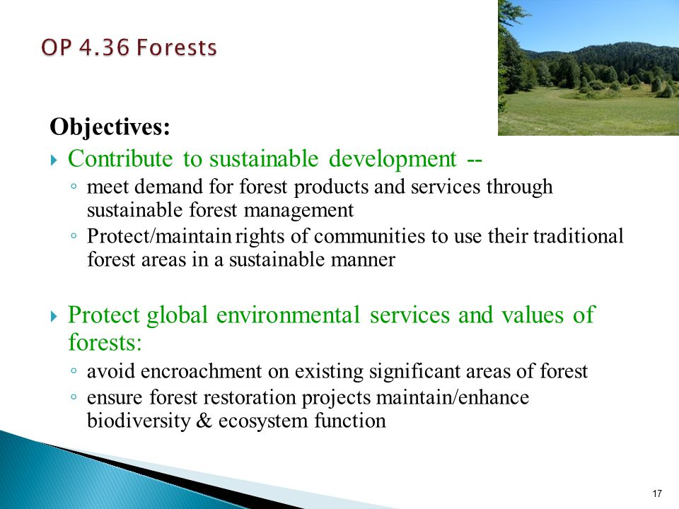 Objectives:  Contribute to sustainable development -- ◦ meet demand for forest products and services through sustainable forest management ◦ Protect/maintain rights of communities to use their traditional forest areas in a sustainable manner  Protect global environmental services and values of forests: ◦ avoid encroachment on existing significant areas of forest ◦ ensure forest restoration projects maintain/enhance biodiversity & ecosystem function 17