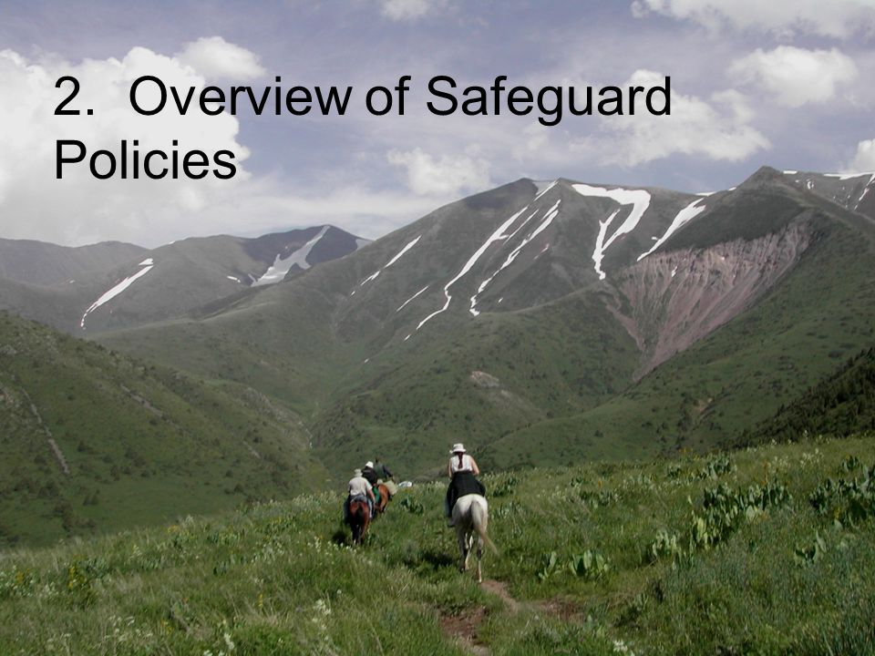 4 2. Overview of Safeguard Policies