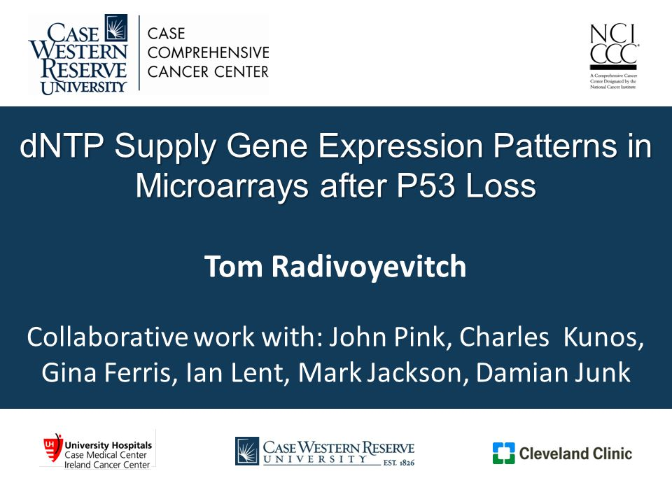 dNTP Supply Gene Expression Patterns in Microarrays after P53 Loss dNTP Supply Gene Expression Patterns in Microarrays after P53 Loss Tom Radivoyevitch Collaborative work with: John Pink, Charles Kunos, Gina Ferris, Ian Lent, Mark Jackson, Damian Junk