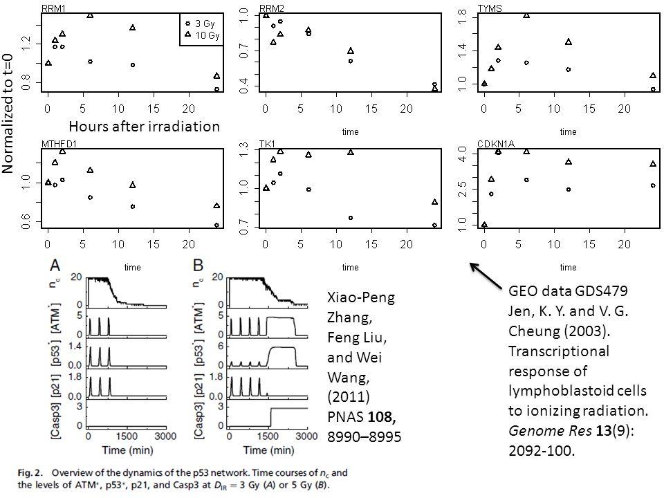 GEO data GDS479 Jen, K.Y. and V. G. Cheung (2003).