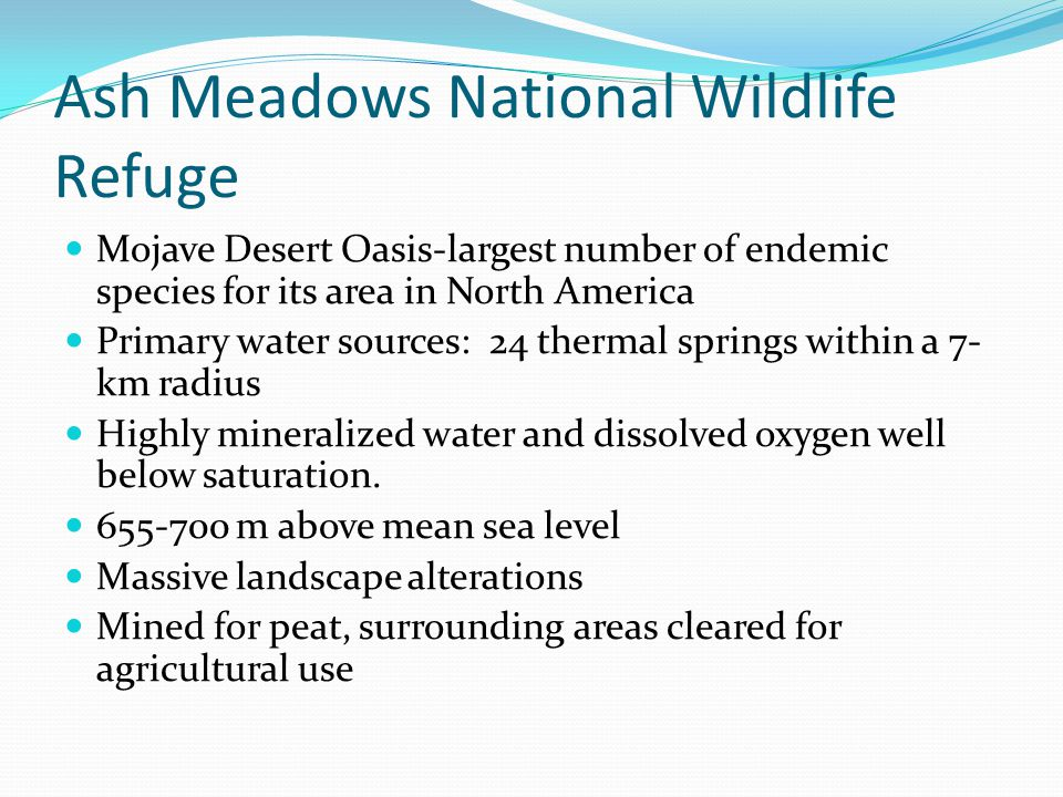 Ash Meadows National Wildlife Refuge Mojave Desert Oasis-largest number of endemic species for its area in North America Primary water sources: 24 thermal springs within a 7- km radius Highly mineralized water and dissolved oxygen well below saturation.