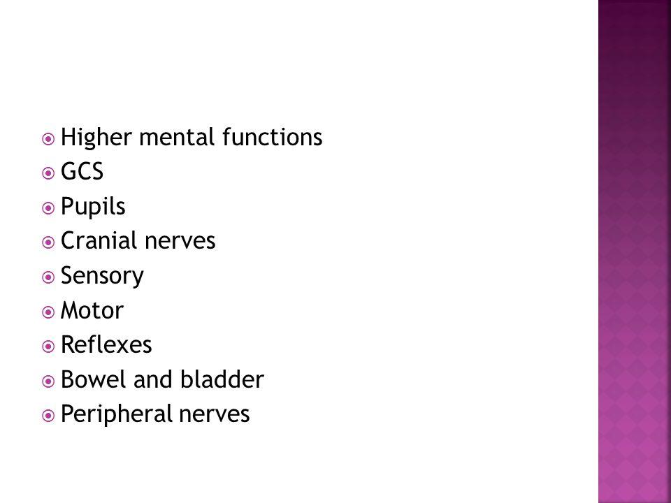  Higher mental functions  GCS  Pupils  Cranial nerves  Sensory  Motor  Reflexes  Bowel and bladder  Peripheral nerves