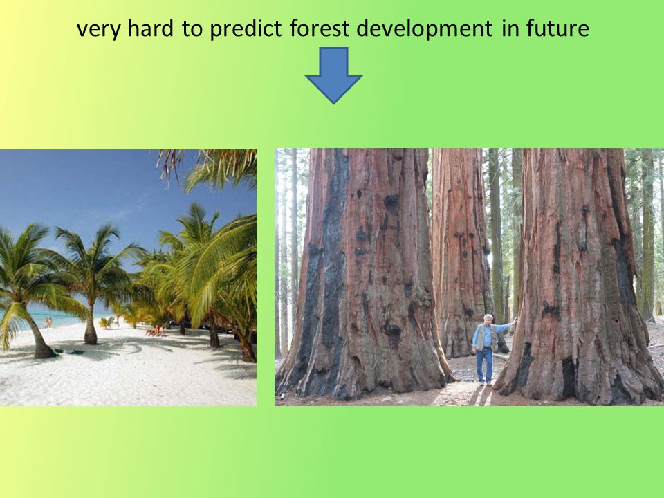 very hard to predict forest development in future