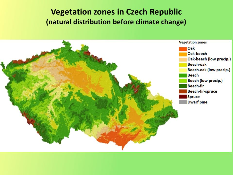 Vegetation zones in Czech Republic (natural distribution before climate change)