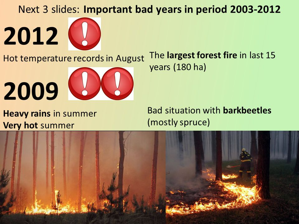 2009 Heavy rains in summer Very hot summer Bad situation with barkbeetles (mostly spruce) 2012 Hot temperature records in August The largest forest fire in last 15 years (180 ha) Next 3 slides: Important bad years in period 2003-2012