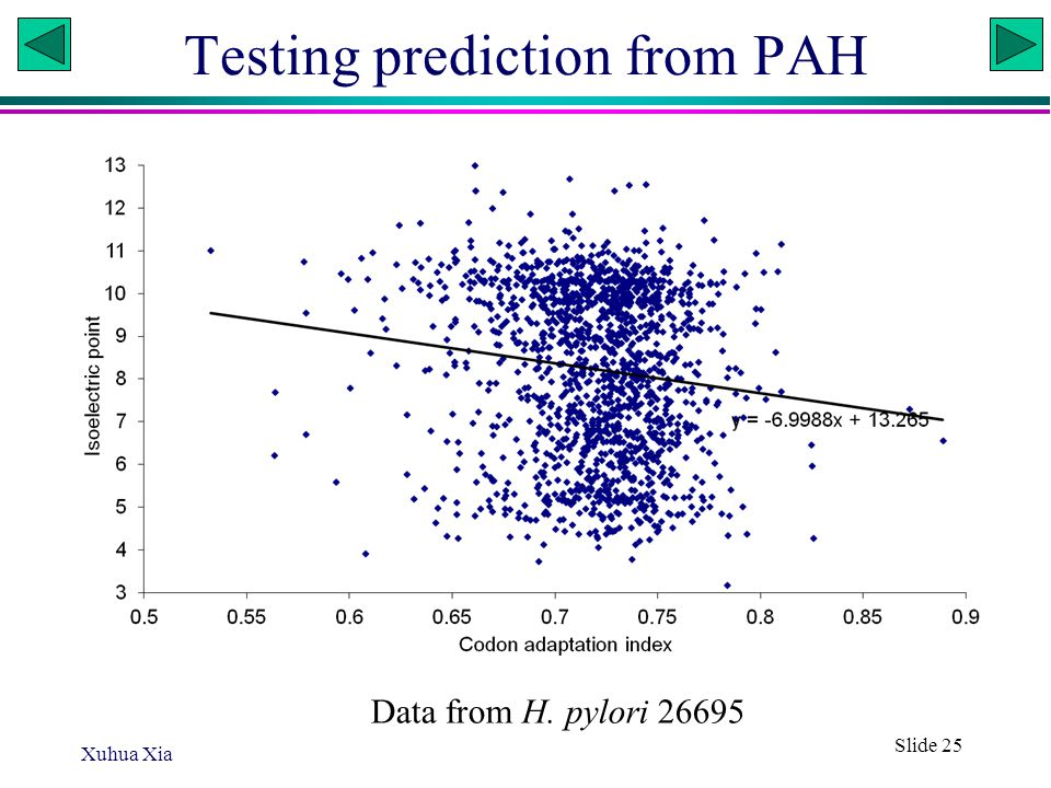 Testing prediction from PAH Xuhua Xia Slide 25 Data from H. pylori 26695