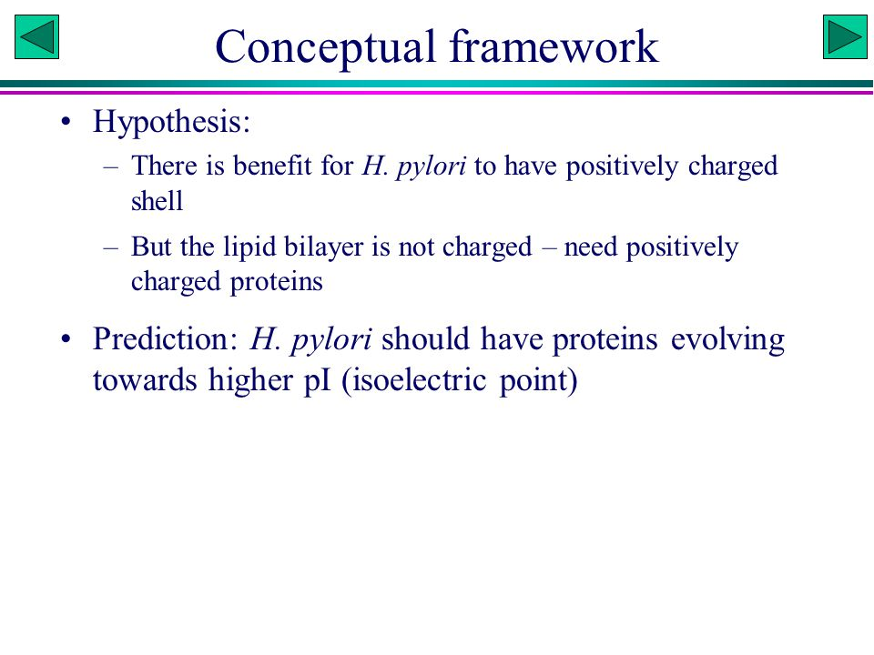 Conceptual framework Hypothesis: –There is benefit for H.
