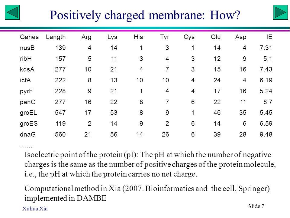 H. pylori vs. H. hepaticus Xuhua Xia Slide 28