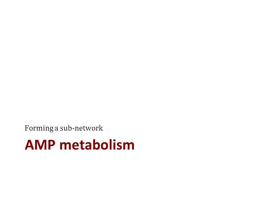 AMP metabolism Forming a sub-network