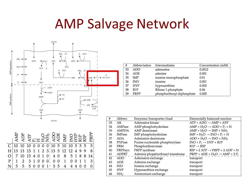 AMP Salvage: S Matrix internal exchange