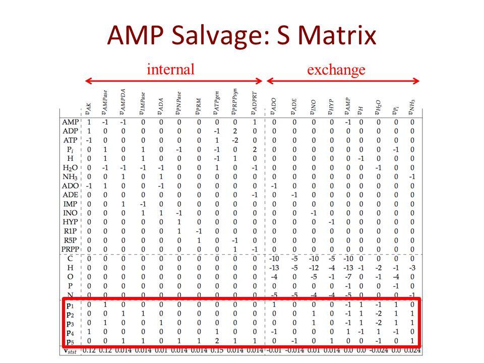 AMP Salvage: pathway vectors
