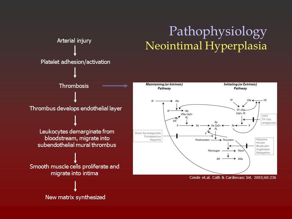 Pathophysiology Neointimal Hyperplasia Conde et.al. Cath & Cardiovasc Int. 2003;60:236 New matrix synthesized Arterial injury Platelet adhesion/activa