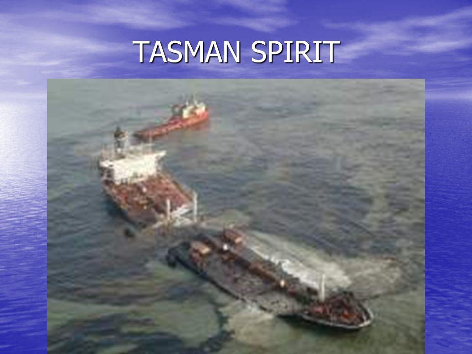TASMAN SPIRIT