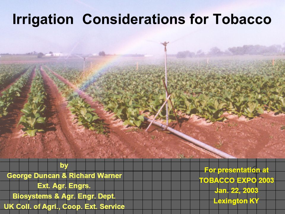 Duncan & Warner, 1/03 BAE, UKY Irrigation Summary UK Spindletop Farm (1982-88) (Yr, Rain+Irrig, Spr., T.row, T.mid) Yield Increase by Irrigation