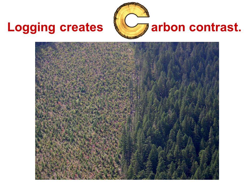 Logging creates arbon contrast.