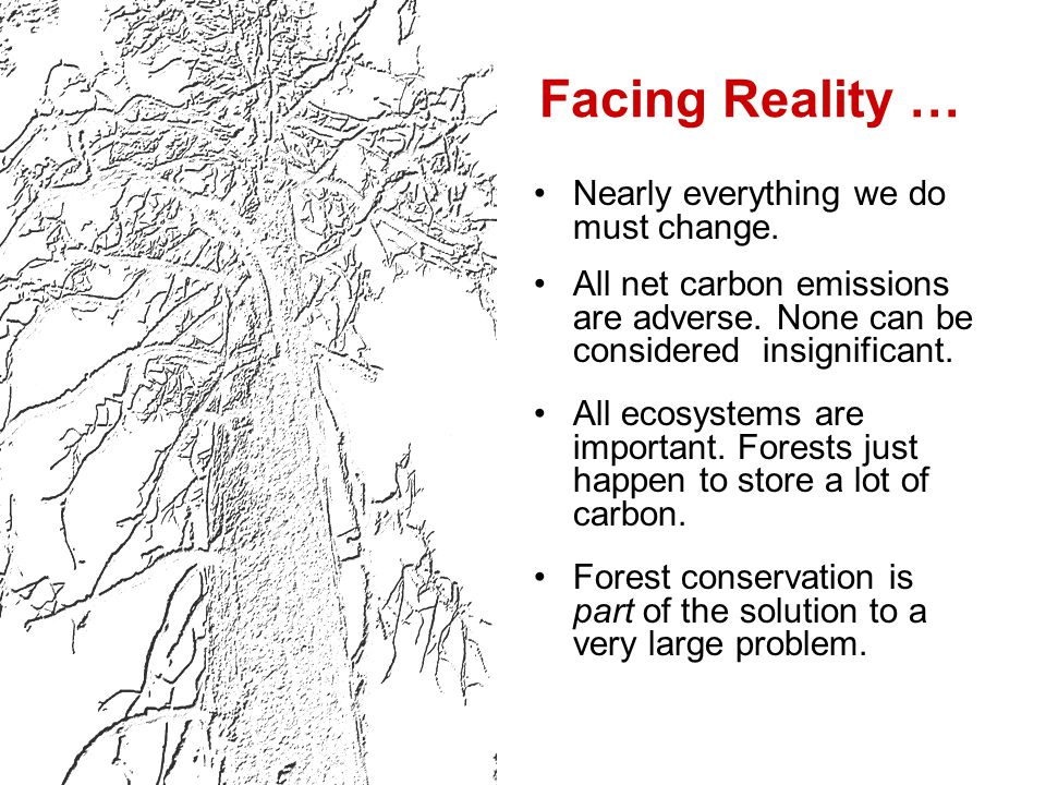 Facing Reality … Nearly everything we do must change.
