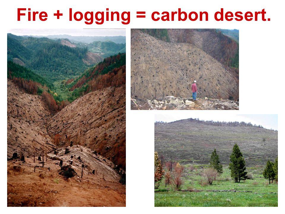 Fire + logging = carbon desert.