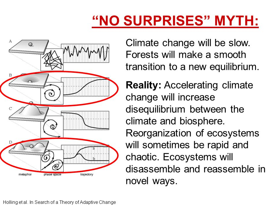 Climate change will be slow. Forests will make a smooth transition to a new equilibrium.