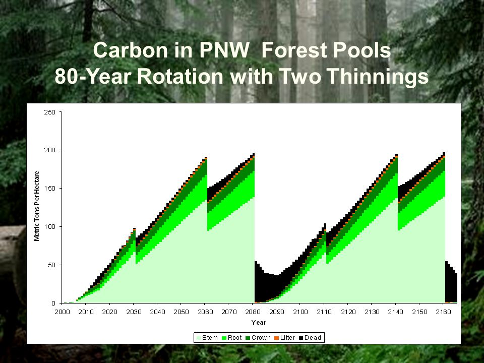 Carbon in PNW Forest Pools 80-Year Rotation with Two Thinnings