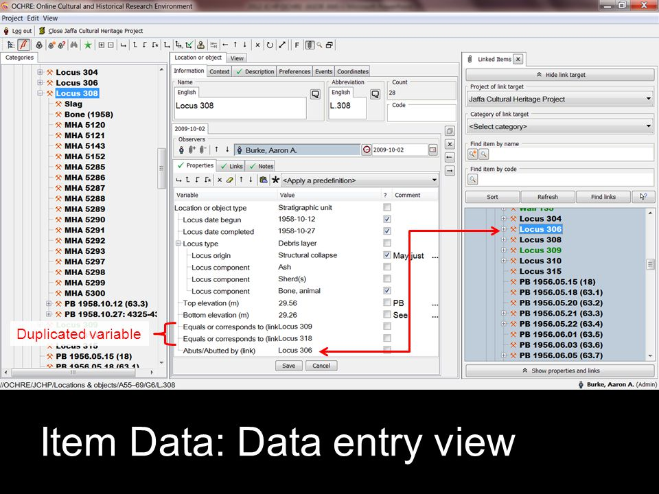 Item Data: Data entry view Duplicated variable