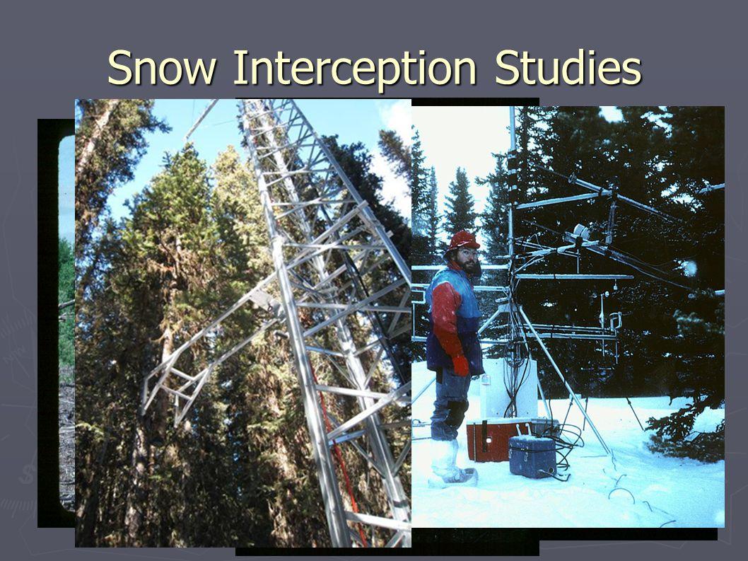 Snow Interception Studies