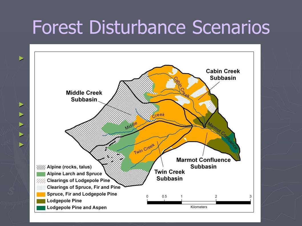 Forest Disturbance Scenarios ► 40 scenarios tested, various areal removals of canopy due to:  Pine Beetle,  Fire,  Logging ► Pine beetle only affects lodgepole pine ► Trunk retention versus salvage logging for beetle and fire ► Stump retention versus complete tree removal for logging ► Selective logging on north versus south facing slopes ► Forest removal results in  reduced interception loss,  reduced ET,  changes to rooting zone,  changes to sub-canopy radiation,  changes to wind speed near the ground,  changes to blowing snow