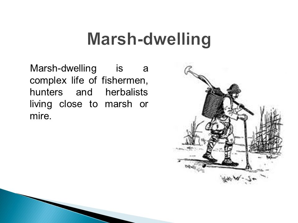 He prepared trawls with different size of holes for fishing and marsh-dwelling.