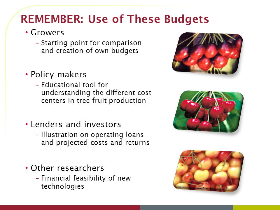 REMEMBER: Use of These Budgets Growers –Starting point for comparison and creation of own budgets Policy makers –Educational tool for understanding the different cost centers in tree fruit production Lenders and investors –Illustration on operating loans and projected costs and returns Other researchers –Financial feasibility of new technologies Photo from Northwest Cherries