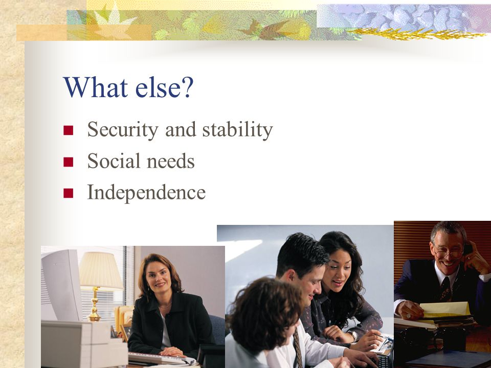 What else? Security and stability Social needs Independence