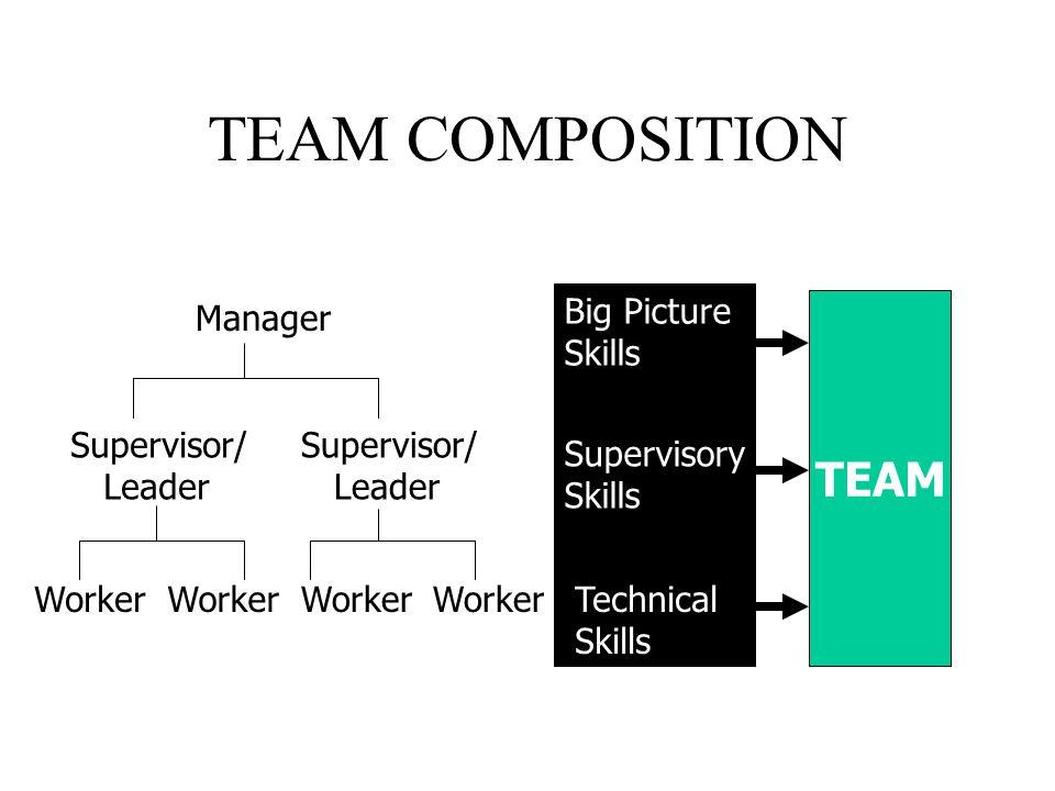 TEAM COMPOSITION Manager Supervisor/ Leader Supervisor/ Leader Worker Big Picture Skills Supervisory Skills Technical Skills TEAM
