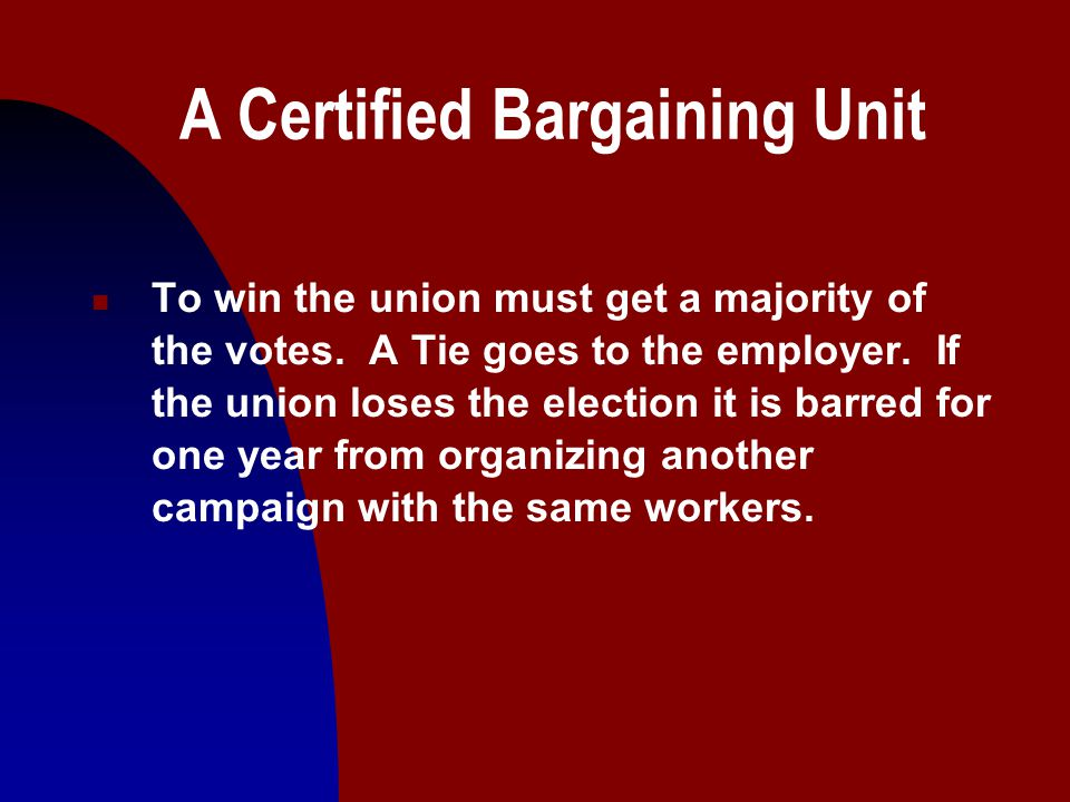 11 A Certified Bargaining Unit n To win the union must get a majority of the votes.
