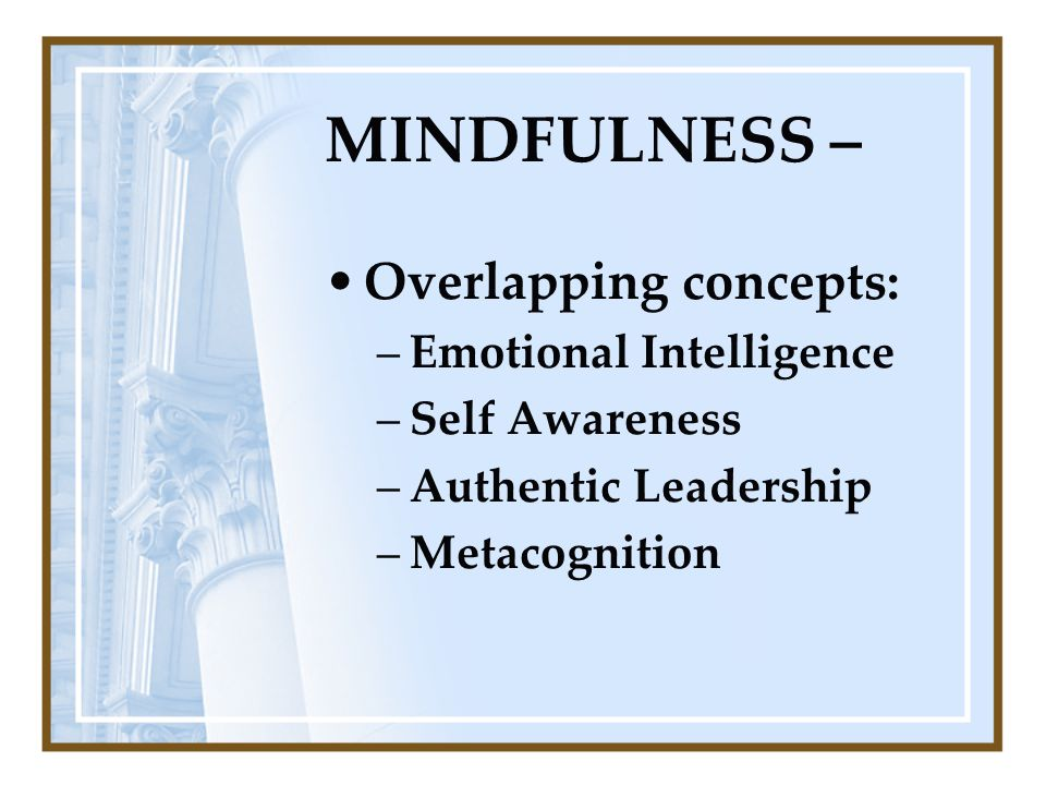 MINDFULNESS – Overlapping concepts: –Emotional Intelligence –Self Awareness –Authentic Leadership –Metacognition