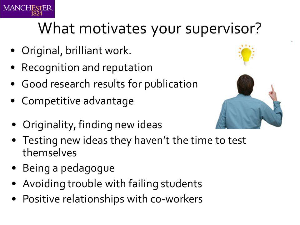 What motivates your supervisor. Original, brilliant work.