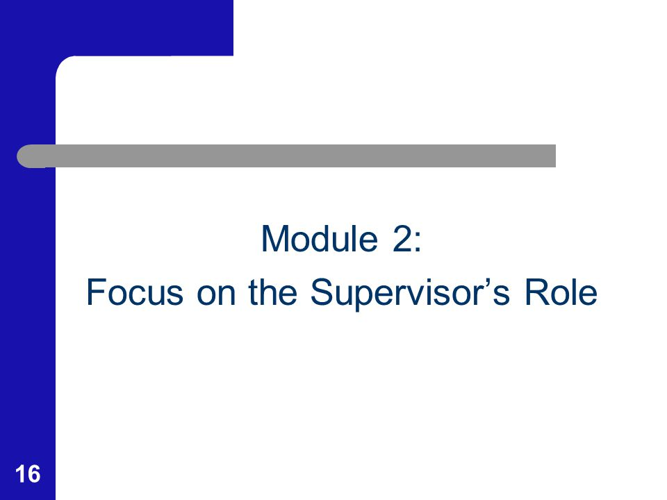 16 Module 2: Focus on the Supervisor's Role