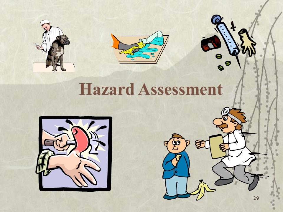 29 Hazard Assessment
