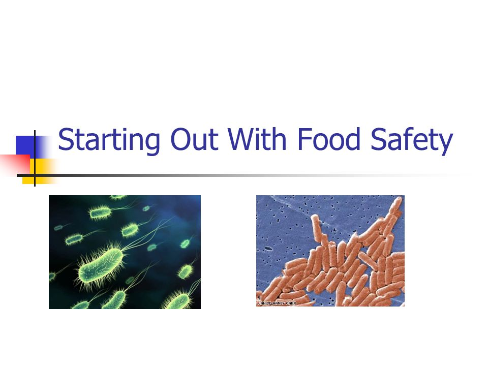 Starting Out With Food Safety