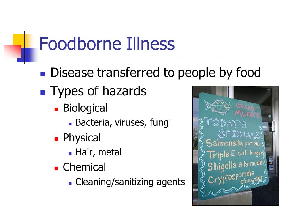 Foodborne Illness Disease transferred to people by food Types of hazards Biological Bacteria, viruses, fungi Physical Hair, metal Chemical Cleaning/sanitizing agents