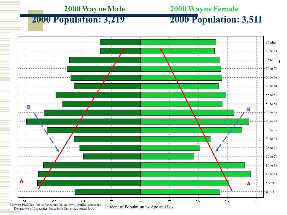 2000 Wayne Male 2000 Population: 3,219 2000 Wayne Female 2000 Population: 3,511 A A B B