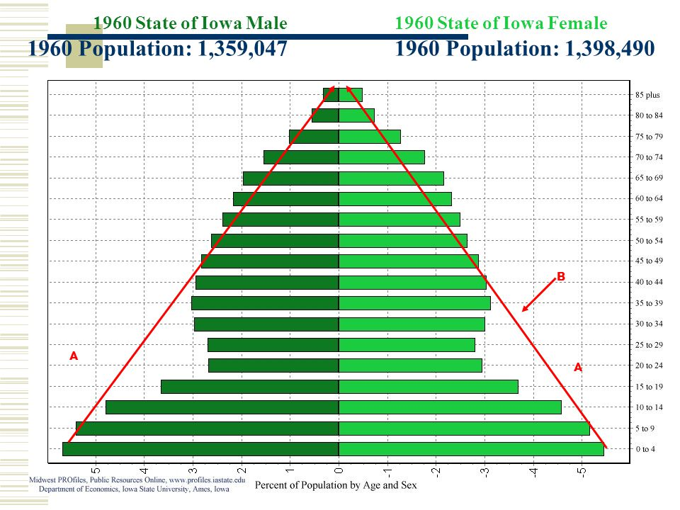 1960 State of Iowa Male 1960 Population: 1,359,047 1960 State of Iowa Female 1960 Population: 1,398,490 A A B