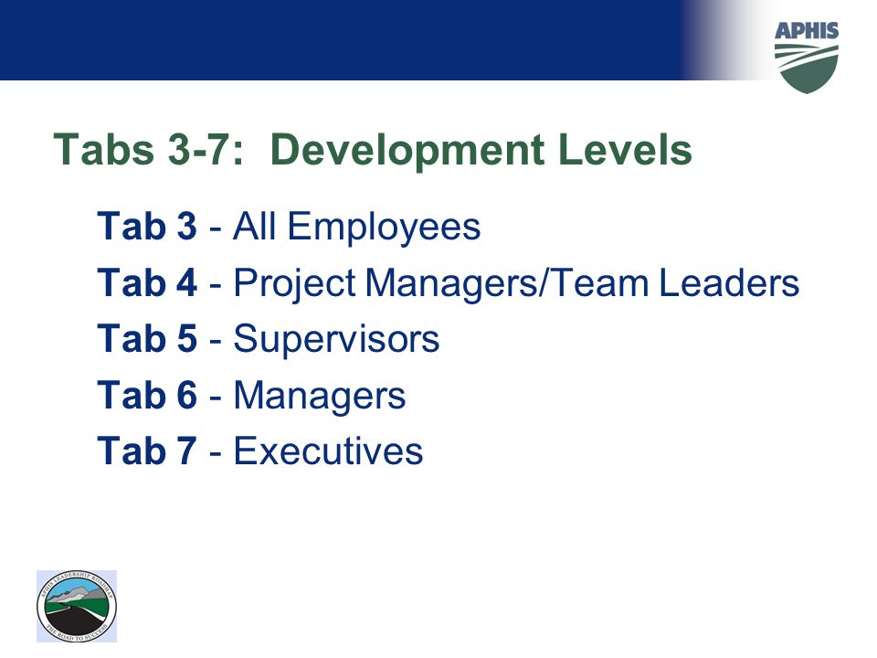 Tabs 3-7: Development Levels Tab 3 - All Employees Tab 4 - Project Managers/Team Leaders Tab 5 - Supervisors Tab 6 - Managers Tab 7 - Executives