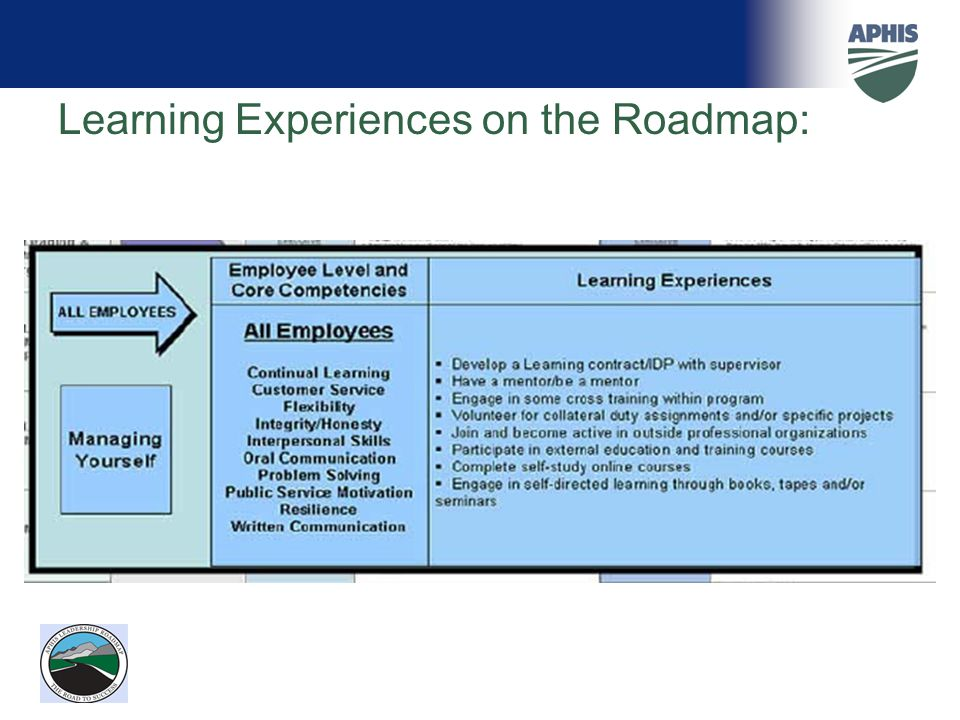 Learning Experiences on the Roadmap: