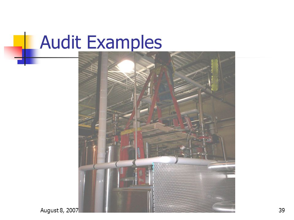 August 8, 2007Version 3.339 Audit Examples