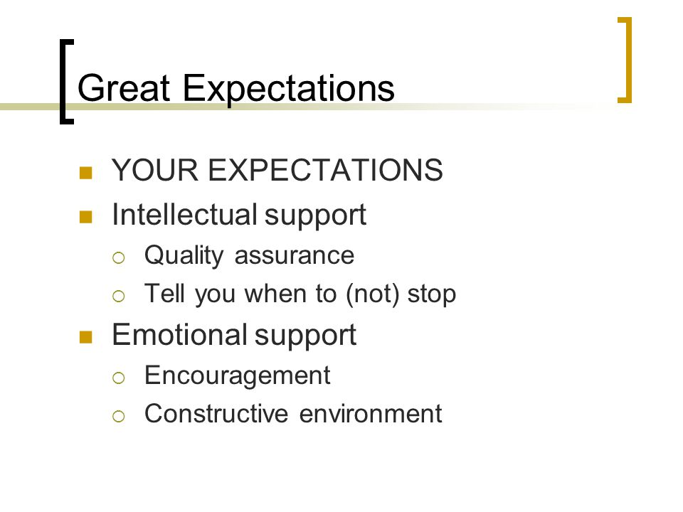 Great Expectations YOUR EXPECTATIONS Intellectual support  Quality assurance  Tell you when to (not) stop Emotional support  Encouragement  Constructive environment