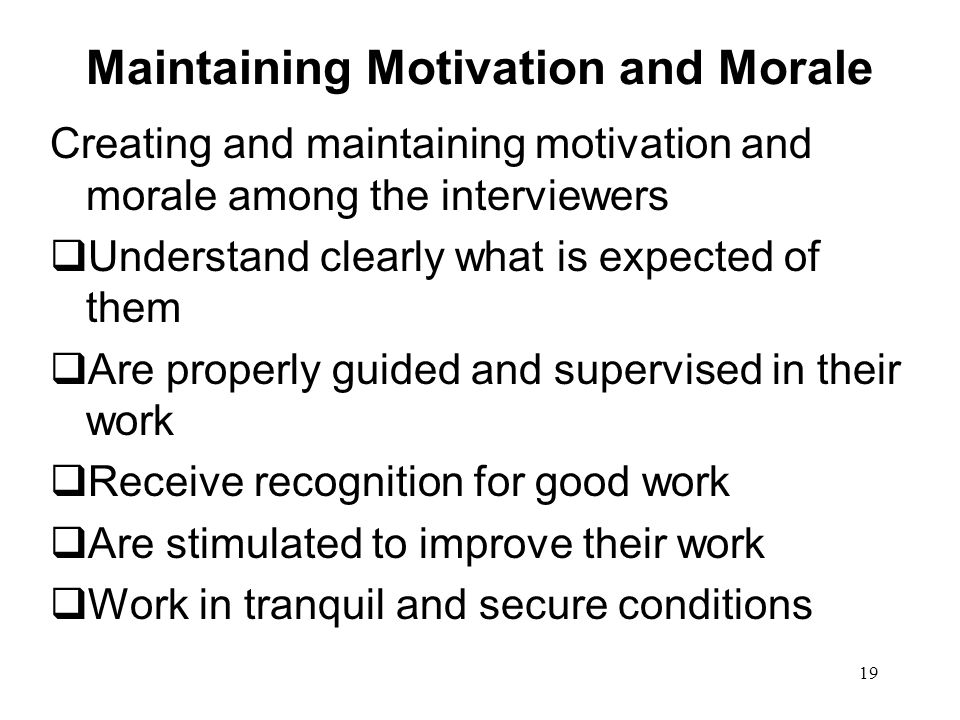 19 Maintaining Motivation and Morale Creating and maintaining motivation and morale among the interviewers  Understand clearly what is expected of them  Are properly guided and supervised in their work  Receive recognition for good work  Are stimulated to improve their work  Work in tranquil and secure conditions