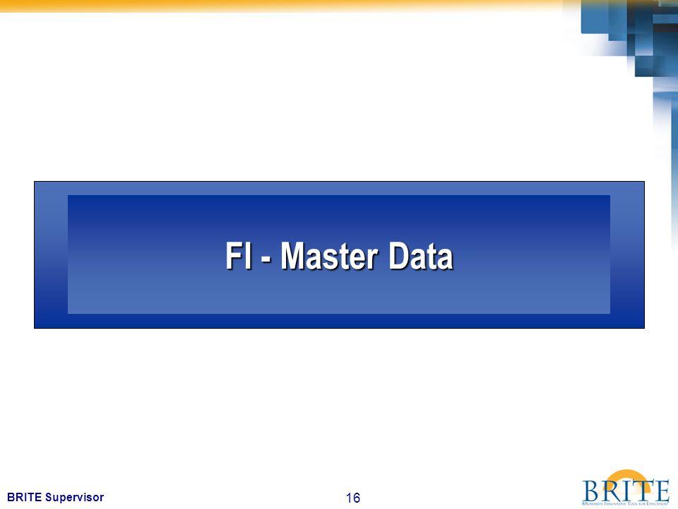 16 BRITE Supervisor FI - Master Data