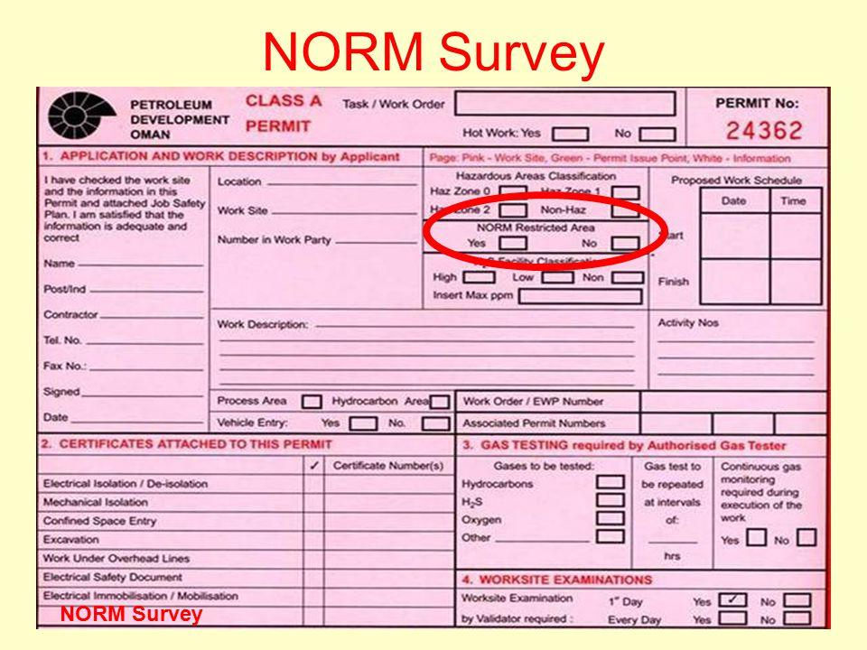 Version One 200624 NORM Survey