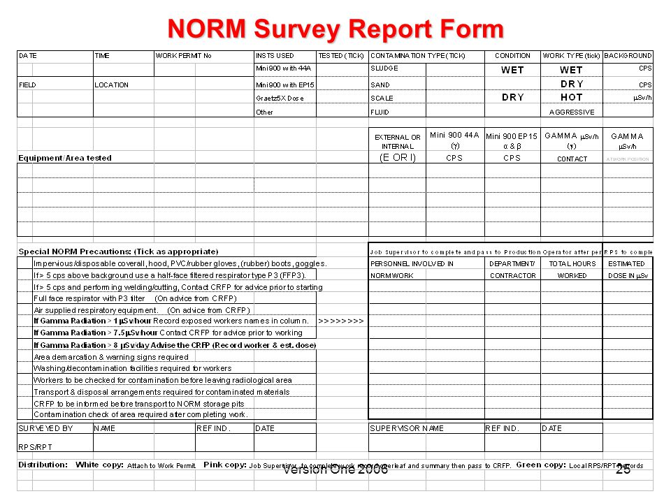 Version One 200625 NORM Survey Report Form