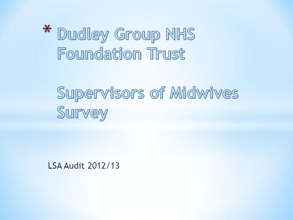 LSA Audit 2012/13